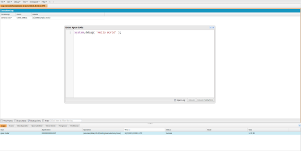 Salesforce -Developer Console