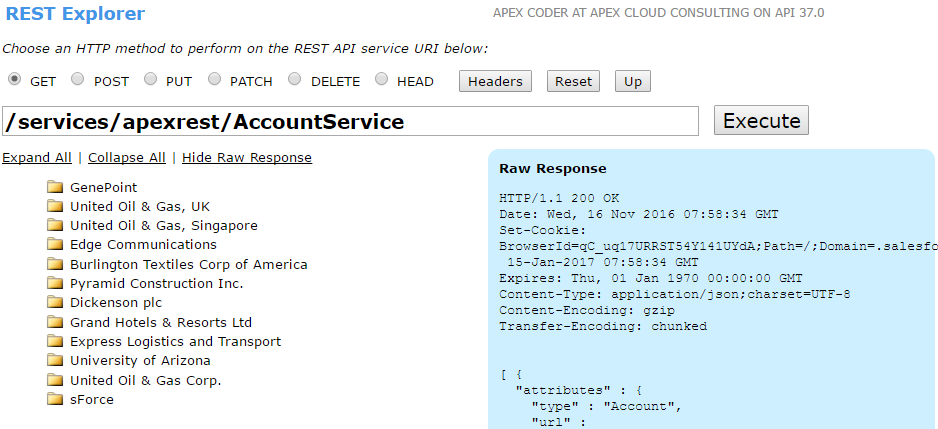 How to create and use Apex Rest Services in Salesforce